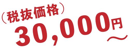(税抜価格)30,000円~